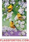 Goldfinch Blossoms House Flag
