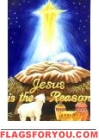 Jesus Is The Reason Garden Flag