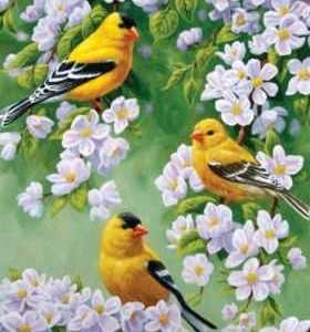 Goldfinch Flags