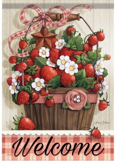 Summer Strawberries Dura Soft House Flag
