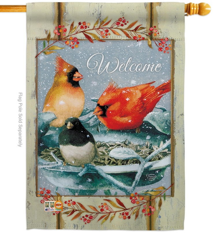 Winter Fun Birdies House Flag