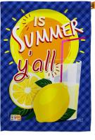 Is Summer Y\'all House Flag