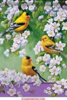 Goldfinch Blossoms Garden Flag