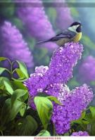 Chickadees & Lilacs House Flag