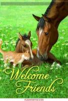Kitty & Foal Garden Flag