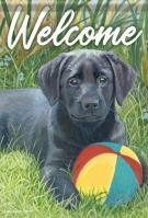 Beach Ball Pup Garden Flag