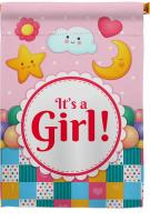 It\'s A Baby Girl House Flag