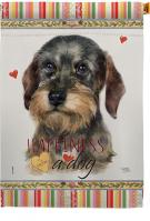 Wire Haired Dachshund Happiness House Flag