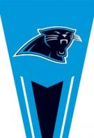 Panthers Yard Pennants 34\
