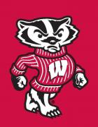 Wisconsin Badgers Flags