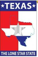 Lone Star State House Flag
